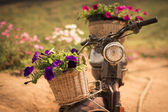 Motorbike with flowers — Stock Photo