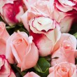 Bouquet of roses — Stock Photo #12659904