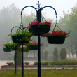 Ornamental flowerpot — Stock Photo #12659997