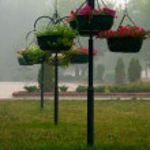 Ornamental flowerpot — Stock Photo #12659998