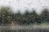 Rain on the glass — Stock Photo