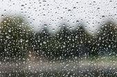 Rain on the glass — Stock Photo
