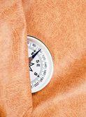 Kompass mot huden — Stockfoto