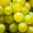 Stock Photo: Green grapes