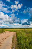 Road and the meadows — Zdjęcie stockowe
