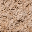 Old dried earth — Stock Photo