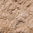 Stock Photo: Old dried earth