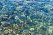 Seabed background — Stock Photo