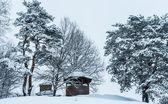 Gazebo winter — Stock Photo