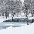 Stock Photo: Not frozen pond in winter
