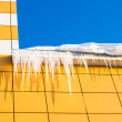 An icicle in the sun — Stock Photo