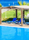 A swimming pool with sun loungers — Stockfoto