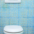 Toilet in the bathroom — Stockfoto