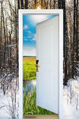 Open door and a winter forest — Stock Photo