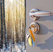 Abra la puerta y un bosque de invierno — Foto de Stock