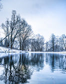 Not frozen pond in winter — Stock Photo