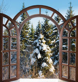 Open arched door with views of the natural landscape — Stock Photo