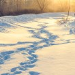 Winter human footprints in the snow at sunrise — Stock Photo #38982711