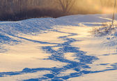 Winter human footprints in the snow at sunrise — Foto Stock