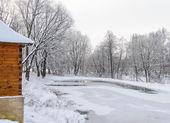 Not frozen pond in winter — Stock Photo