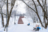 Winter promenade for walking with a bench and a lantern — Stock Photo