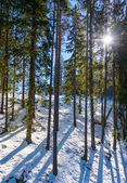 Mountain landscape in sunny winter frosty day with blue clear sk — Stock Photo