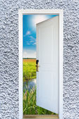 Open door with a view of green meadow illuminated by bright suns — Stock Photo