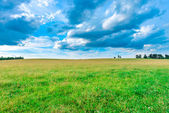 Prairie landscape and sky — Stock Photo