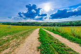 Dirt road in a field — Stock Photo
