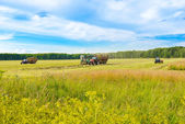 Tractor with a hay — Stock Photo