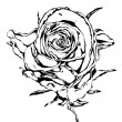 Rose flower black white — Stock Photo