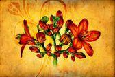 Flower nature plant art design — Stock Photo