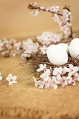 Beautiful Easter eggs in nest with floral decoration — Stockfoto
