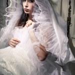 vintage-la francês retrato de princesa e noiva de um belo brune — Fotografia Stock  #16209837