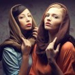 Portrait of two gorgeous young women (brunette and red-haired) i - Stock Photo