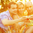 Summer weekend concept. Portrait of happy group of friends in tr — Stock Photo
