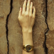 Luxurios accessory concept. Young woman's hand wearing a golden  — Photo #50188429