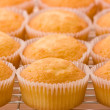 Baked cupcakes on a cooling rack — Stock Photo