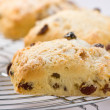 Freshly baked fruit scones on cooling rack. — Stock Photo #12718815