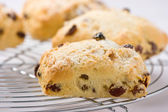 Freshly baked fruit scones on a cooling rack. — Stock Photo