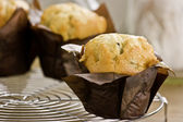 Blueberry Muffins on a cooling rack — Stock Photo