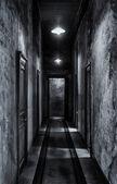 Hall Of Doors. — Stock Photo