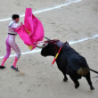 Bullfight — Foto Stock