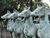 Chinese Bronze Horse — Stock Photo