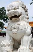 çin oyulmuş taş aslan — Stok fotoğraf
