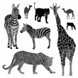 Vector illustration set: wild animals .Africa — Stock Vector