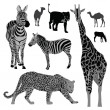 Vector illustration set: wild animals .Africa — Image vectorielle