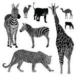 Vector illustration set: wild animals .Africa — Vecteur