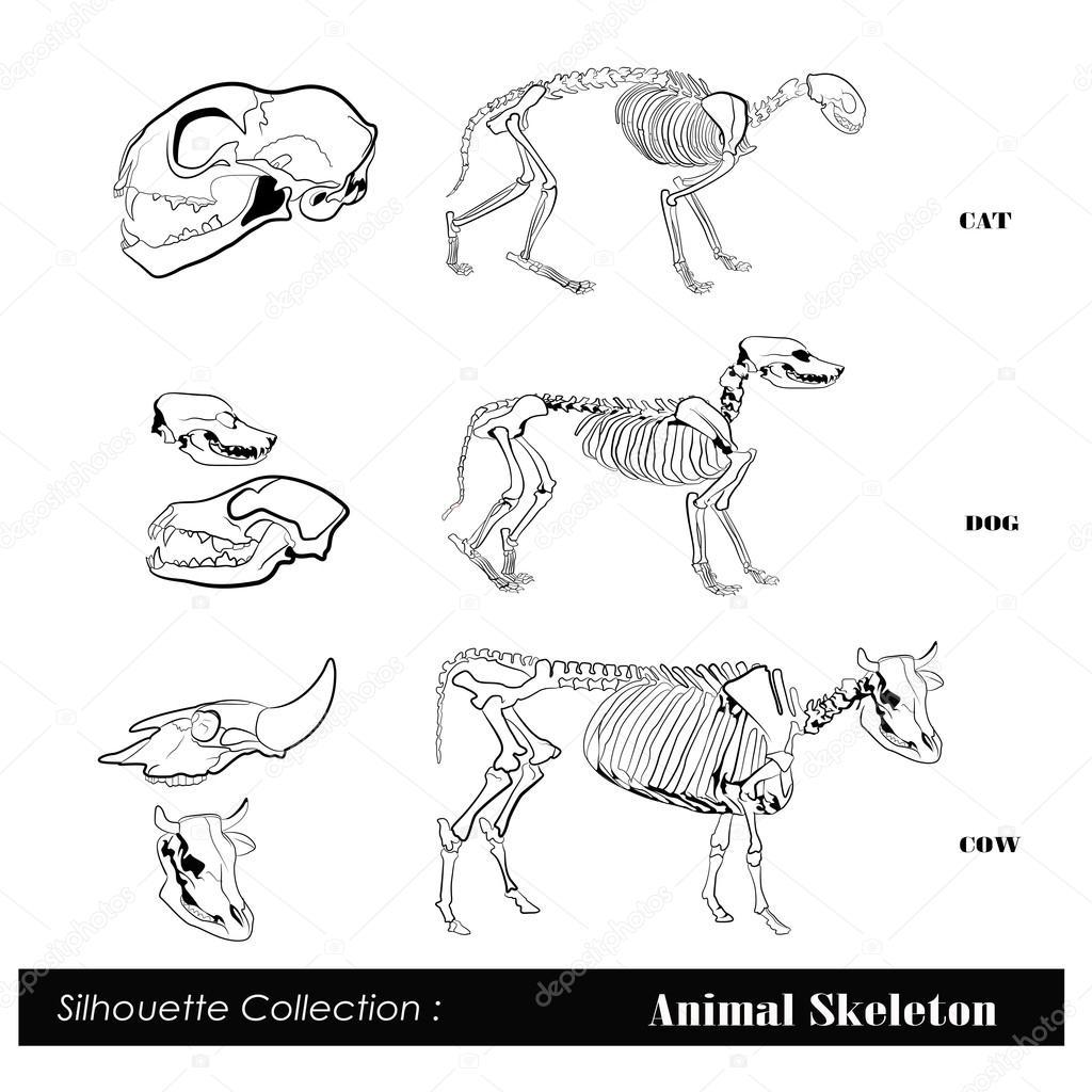 好看的手绘鱼骨图