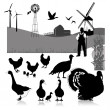Vector illustration:farm birds - Stock Vector